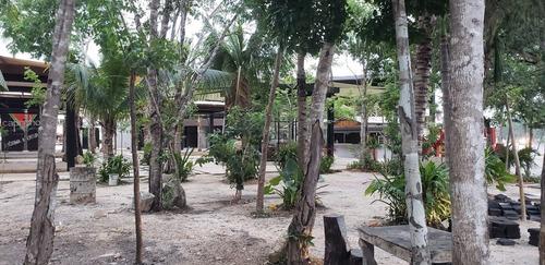locales en renta nuevo mercado de playa del carmen