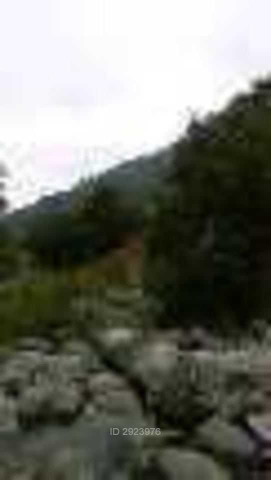 localidad de pejerrey, linares