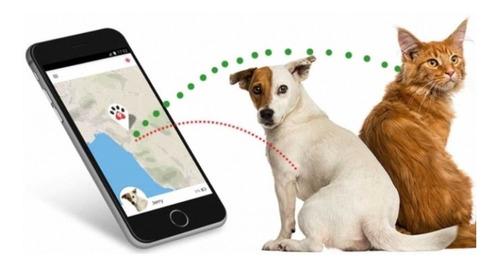 localizador gps para mascotas