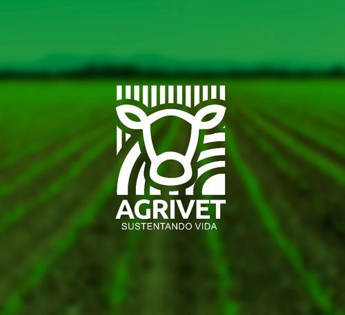logotipo diseño