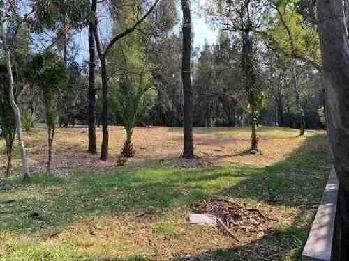 lomas de chapultepec, calle cerrada, jardin, salida al bosqu