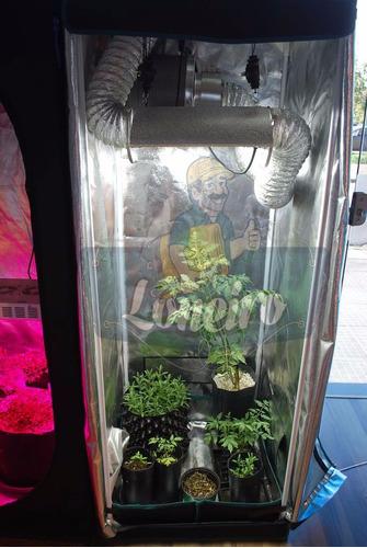 lona 5 x 2 mts refletiva estufa grow cultivo indoor cultivar