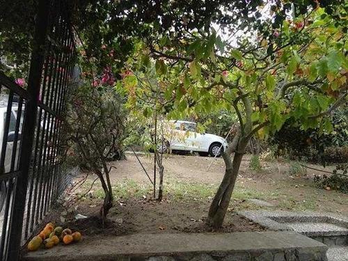 los carolinos / las acacias