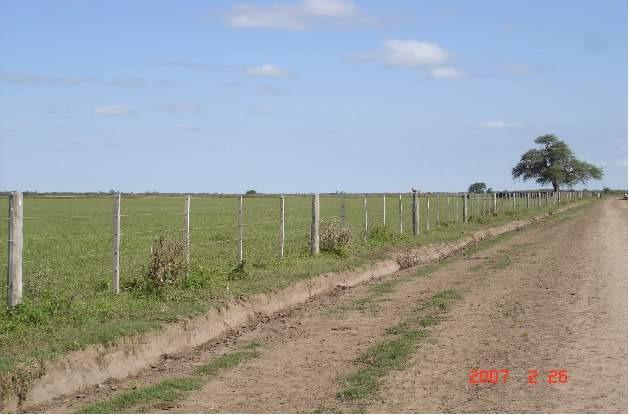 los chañaritos-campo agrícola 150 has