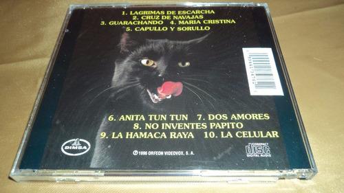 los grandes exitos de los gatos negros lagrimas de escarcha