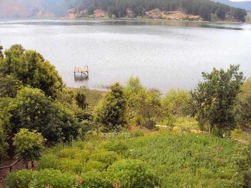 los jardines de la peninsula - lago vichuquen