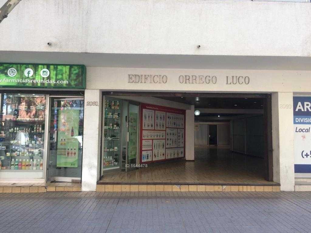 los leones - avenida nueva providencia 2060, providencia