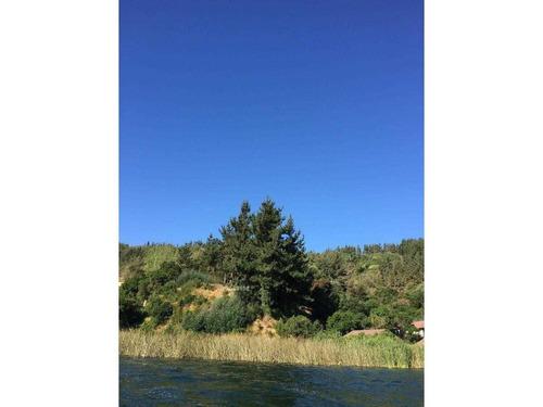 los palitos - lago vichuquén