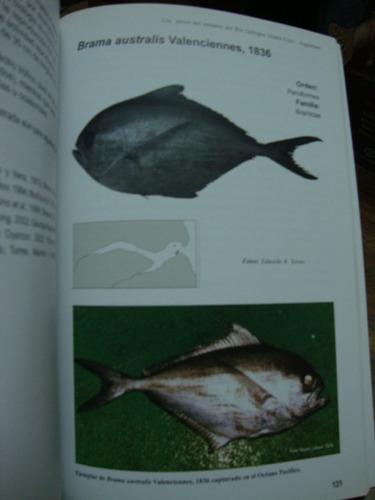 los peces del estuario del rio gallegos santa cruz argentina