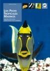 los peces tropicales marinos gelsomina parisse