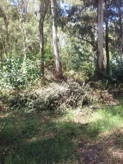 los pinos 2315m2 exc.ubic. rebajado. d25.000 y facilidades
