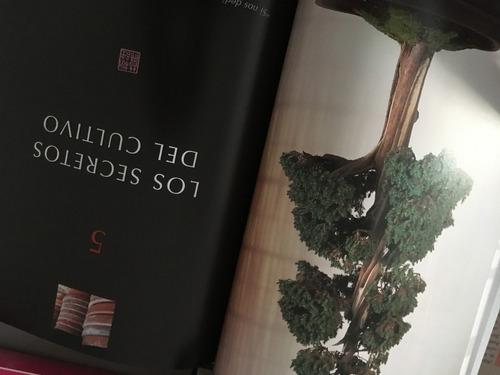 los secretos del bonsai (en papel) peter chan