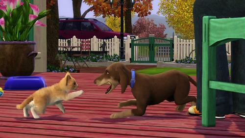 los sims 3 vaya fauna expansion juego pc original fisico dvd