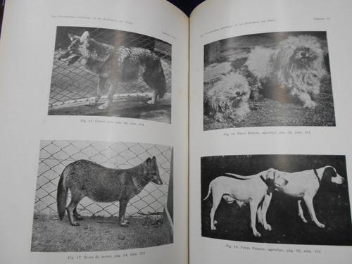 los vertebrados exhibidos en los zoológicos del plata - dr.