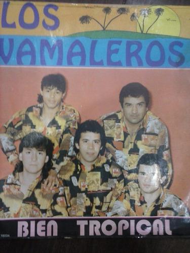 los wamaleros lp vinilo cumbia (bien tropical)dialogomusical