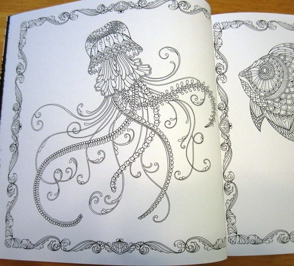 Lost Ocean An Inky Adventure And Coloring Book P Colo R1