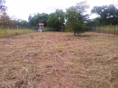 lot for sale in bijao, why buying? $79,999 great deal!!! val