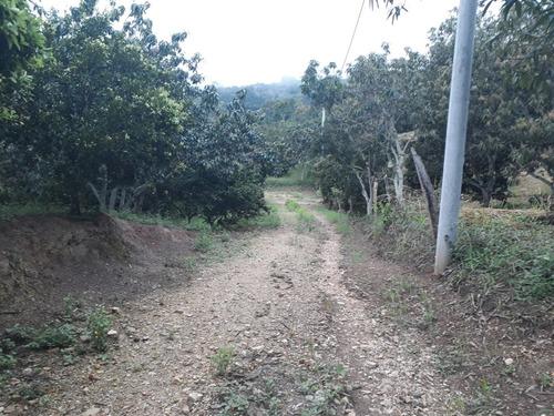 lote 2012m2, excelente ubicación zona rural de la mesa cund