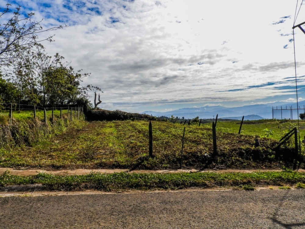 lote 228m2