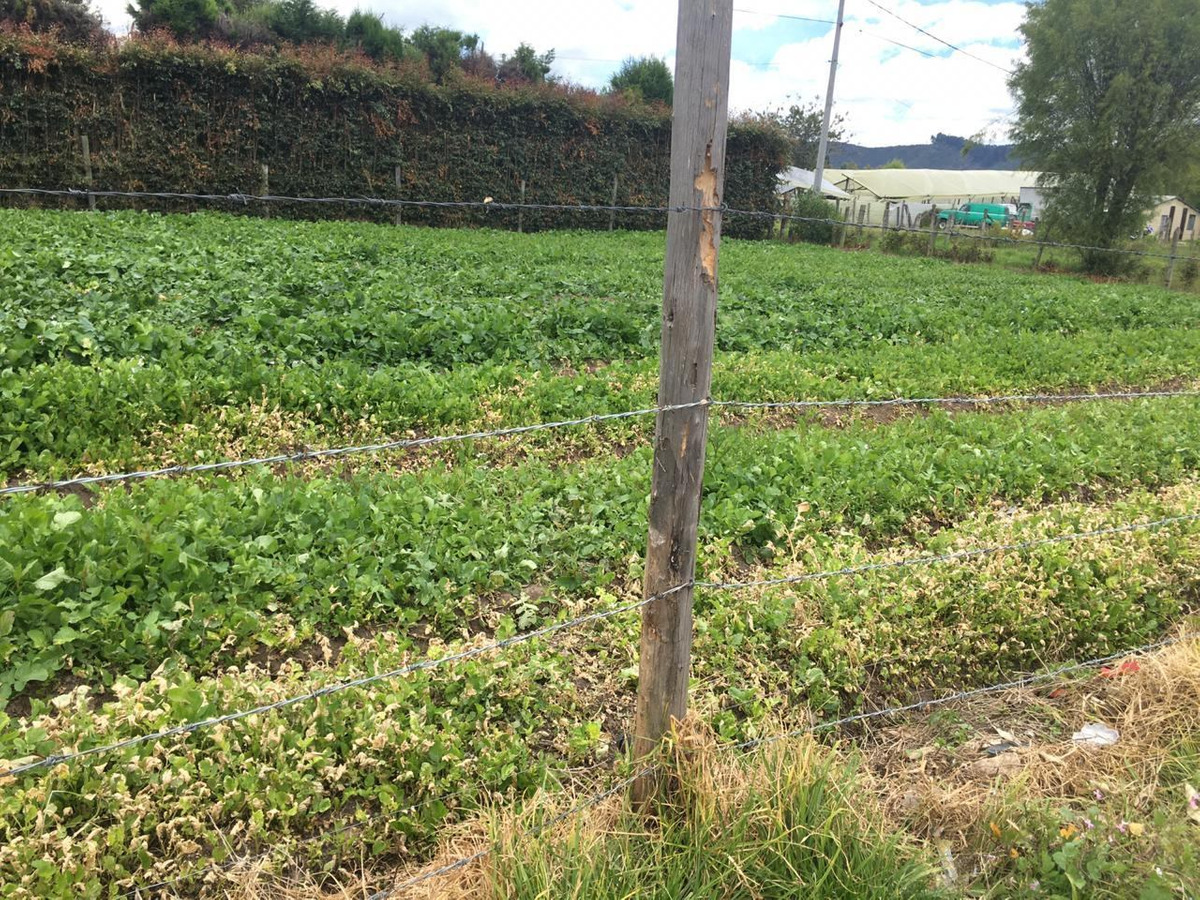 lote, 692 m2,