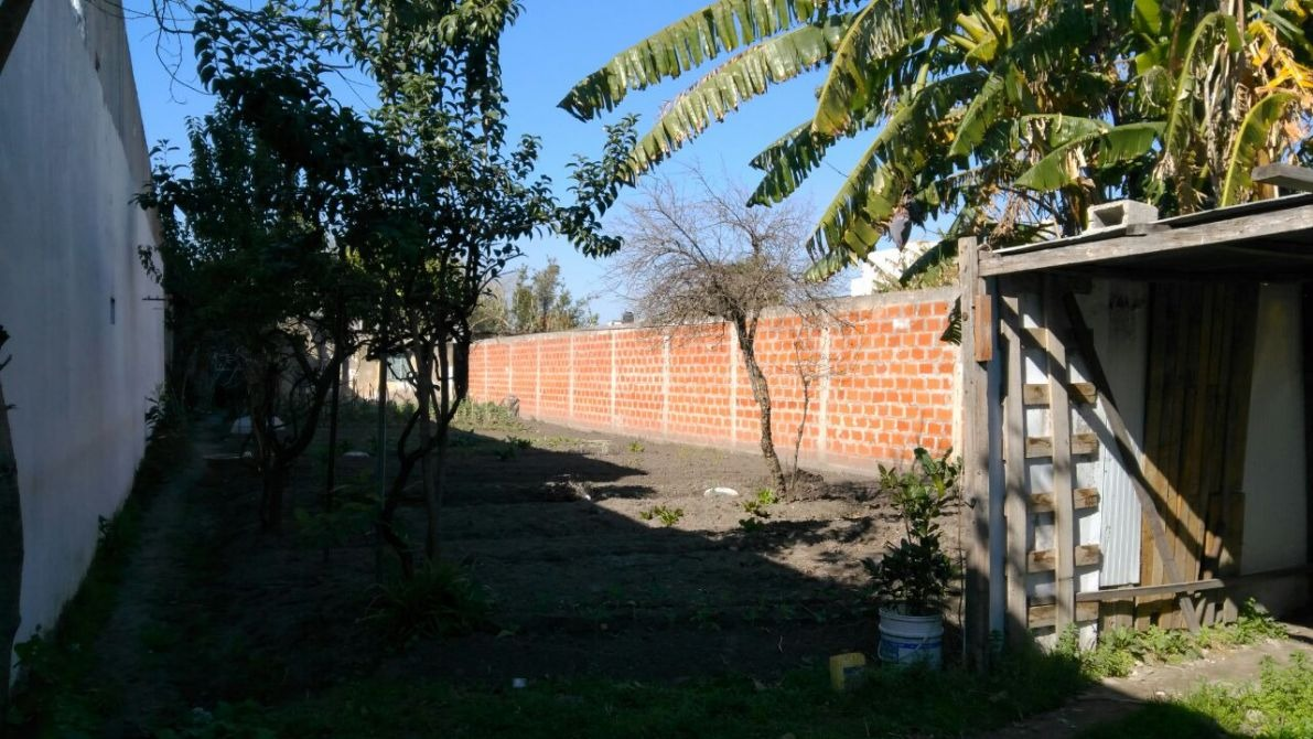 lote 700mts
