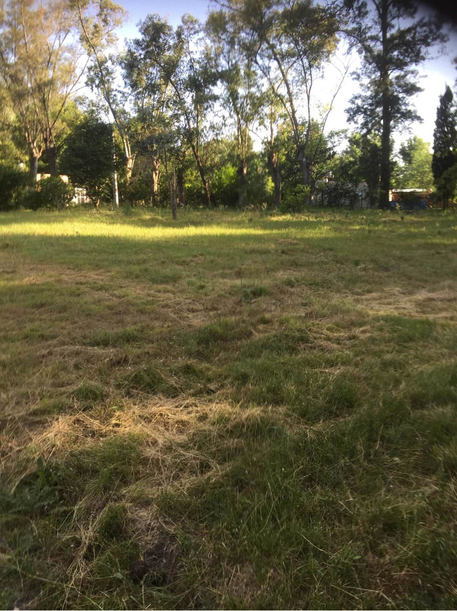 lote 710 mts linneo y sucre