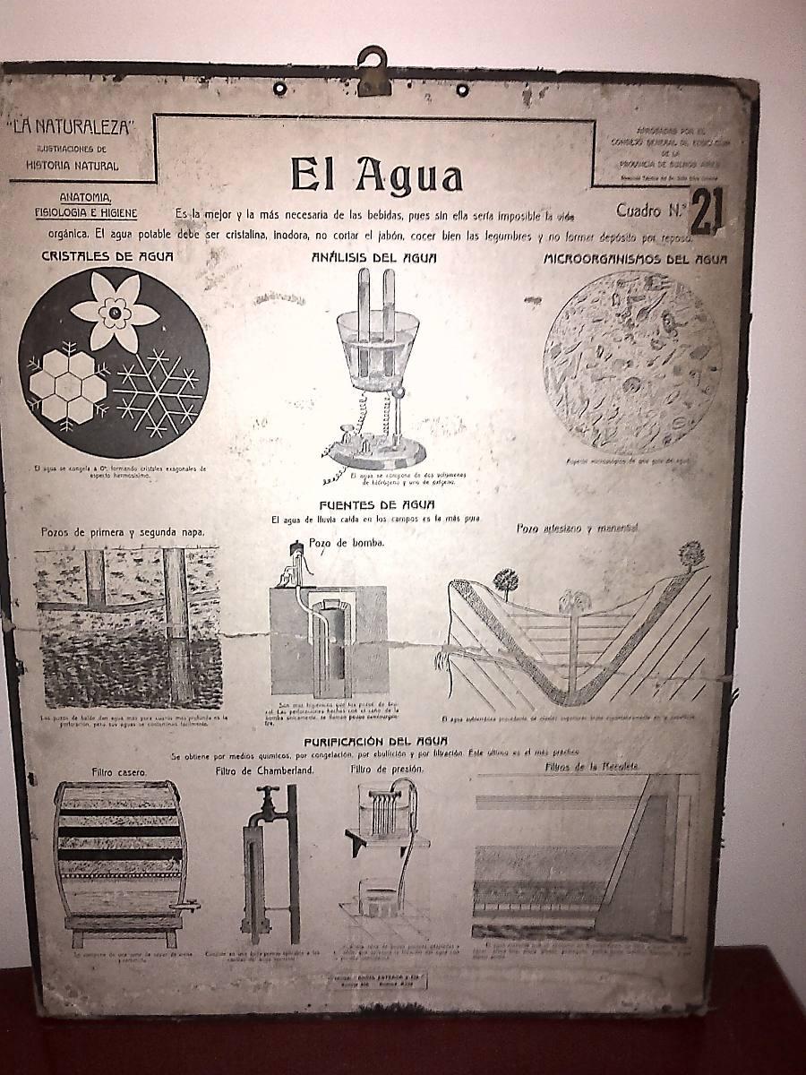 Fantástico Anatomía De Un Pozo De Agua Molde - Anatomía de Las ...