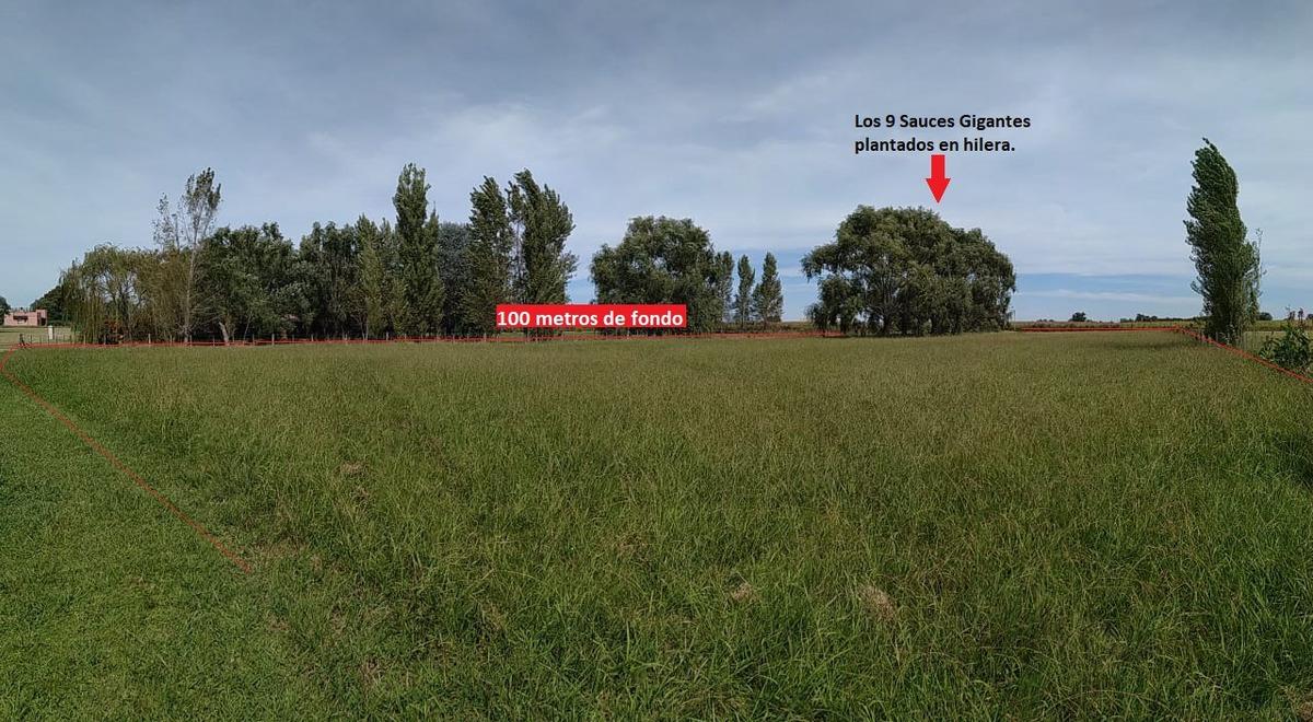 lote arbolado 5000m permuto club de campo chacras la cecilia