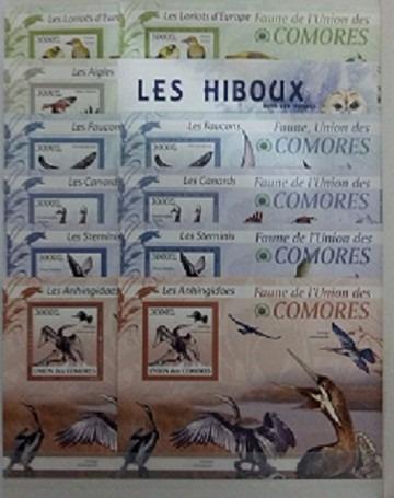 lote aves- pajaros - comores