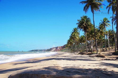 lote beira mar em praia de coqueirinho - te0525