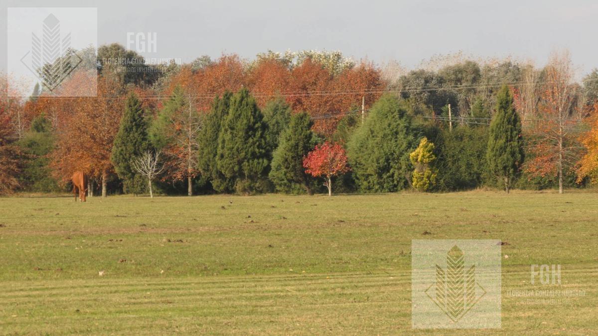 lote bosque en el campo fincas exclusivas de cardales