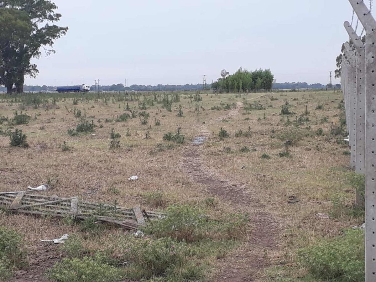 lote chacra campo casco urbano azul 17 hectáreas divisibles