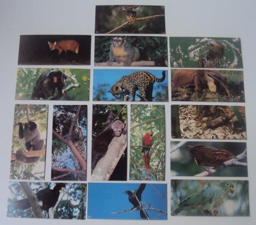 lote com 16 figurinhas surpresa - animais da amazônia