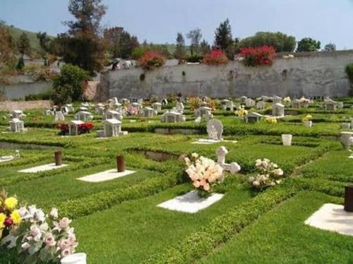 lote de (4) gavetas jardines del recuerdo máximo lujo