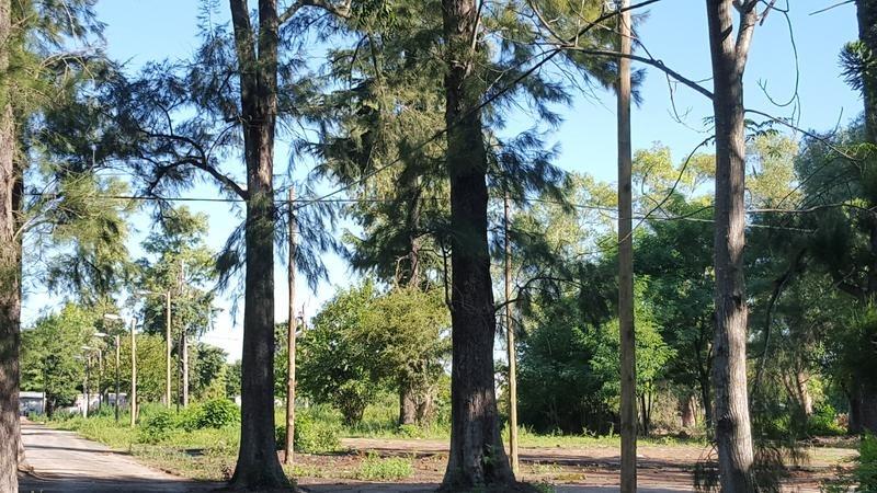 lote de 400m2 en b° parque la arboleda de longchamps.