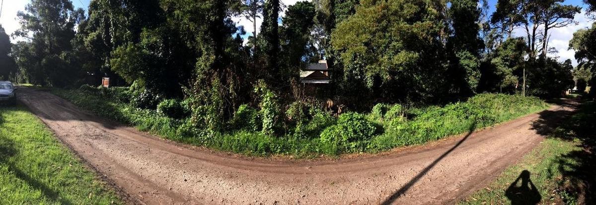 lote de 450 m2 en el bosque peralta ramos en venta