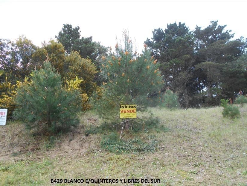 lote de terreno en nueva atlantis (b429)
