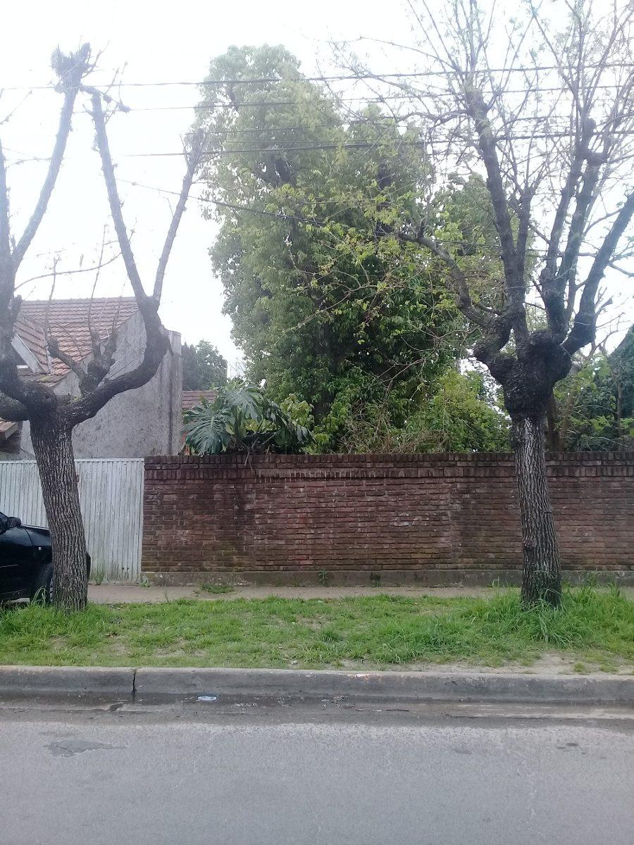 lote de terreno pelado y cercado a muro