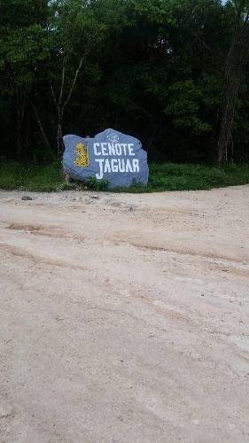 lote dentro de cenote 2 ojos frente a cenote jaguar