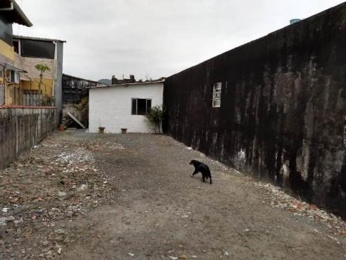 lote em mongaguá com 125m² total 6027rafa
