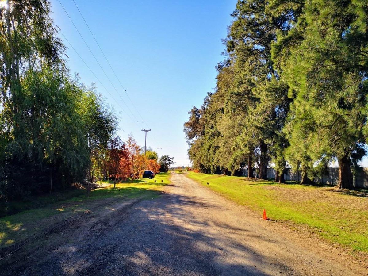 lote en barrio cerrado las casuarinas. terrenos en ibarlucea. financiados.