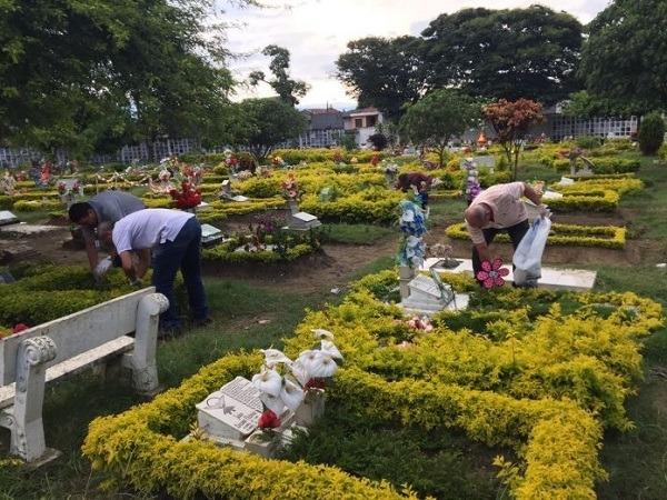 lote en cementerio los olivos en tulua, valle.