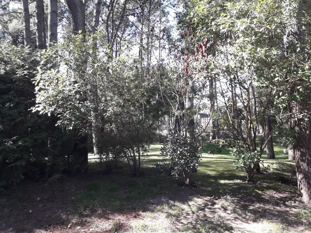 lote en  exclusiva zona golf pinamar