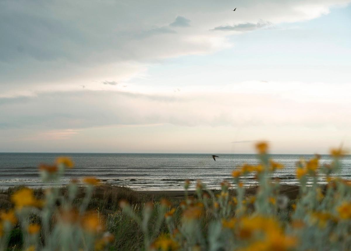 lote en km 314 casas de mar - excelente ubicación