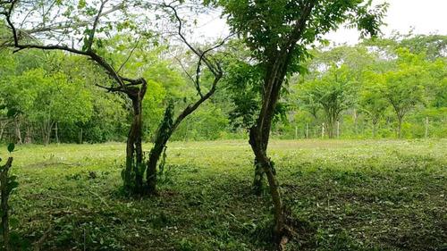 lote en pontezuela -cartagena - colombia