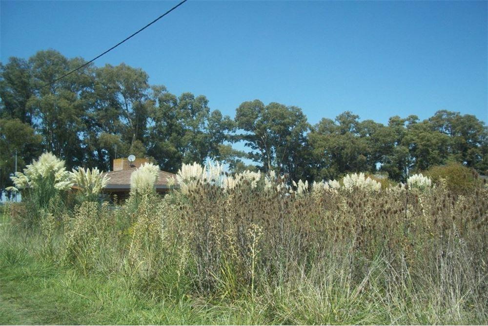 lote en ruta 3  km 77, 300 cañuelas