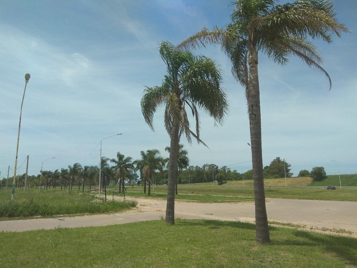 lote en tierra de sueños las palmeras esquina comercial