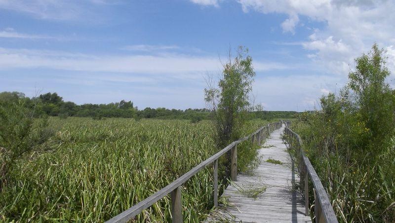 lote en venta delta tigre - canal del este - dos rios