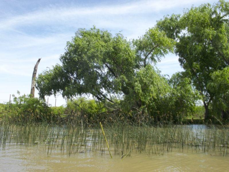lote en venta delta tigre- rio carapachay- lote carapachay