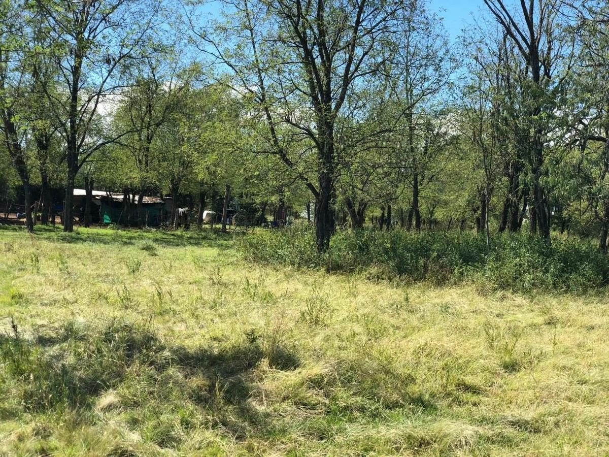 lote en  (vida silvestre en punto claro) cerca de villa general belgrano